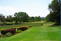 Golf courses in Gauteng
