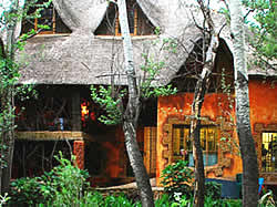 Outside the Goblin's Cove Restaurant in Magaliesburg, is the Fairy Grove, a magical place for kids and adults alike,