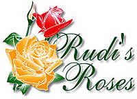Rudi's Roses is the second largest rose growers in South Africa