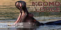 n'Gomo Safari Lodge tented camp accommodation in the Cradle of Humankind nature reserve